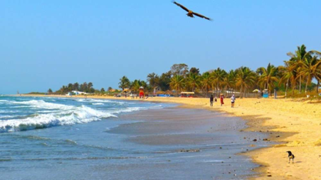 About the gambia